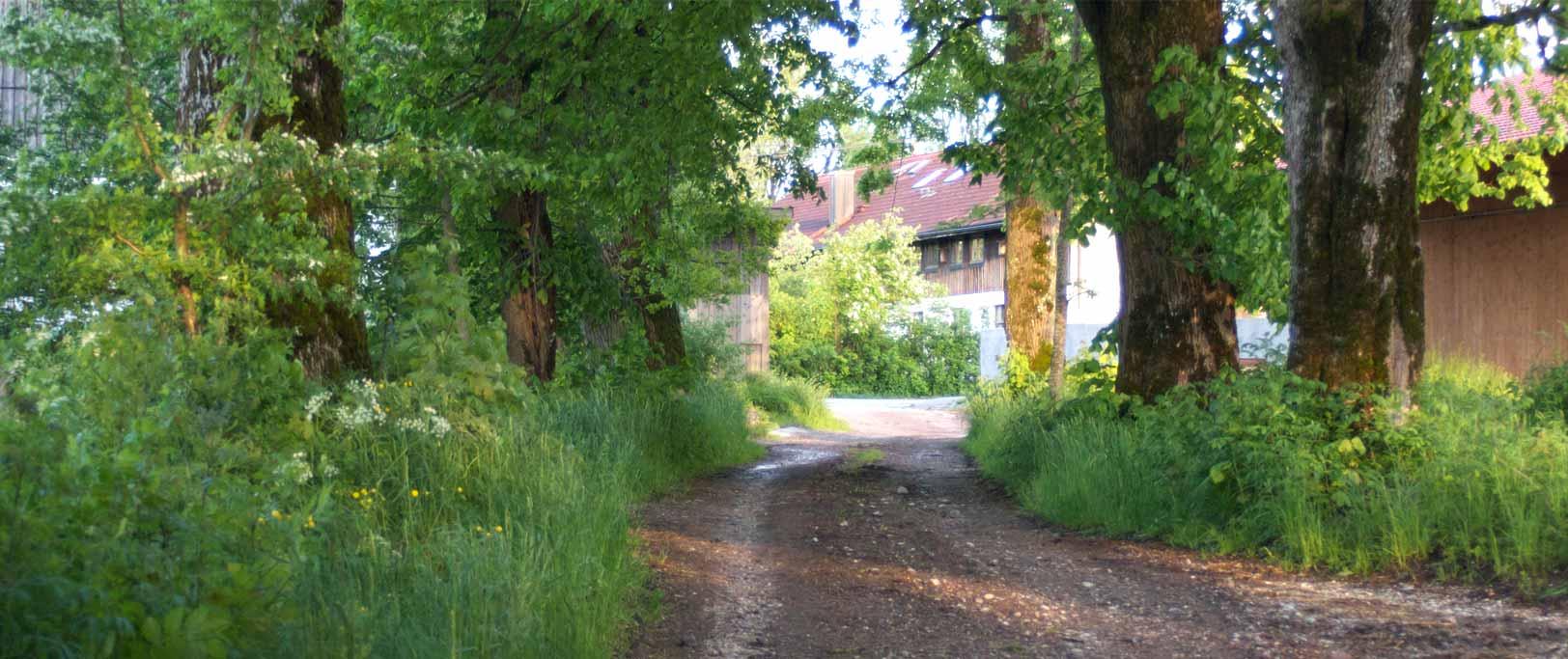 Hofladen Mooseurach Boschhof