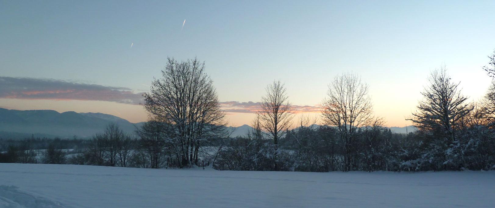 Winter in Mooseurach, Boschhof